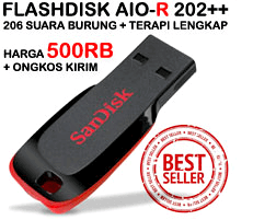 Smart Mastering Flashdisk AIO-R