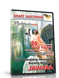Smart Mastering Platinum Edition